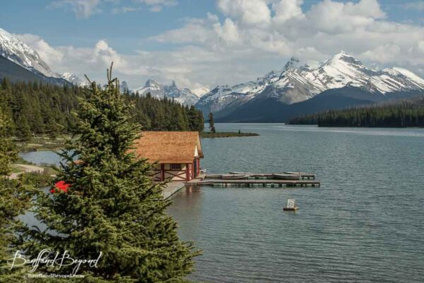maligne lake surrounded by glacier covered mountains