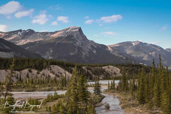 channels of the athabasca river and mountains in jasper
