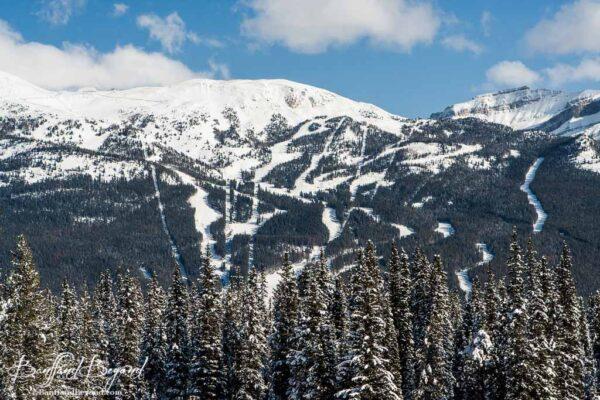 runs at lake louise ski hill