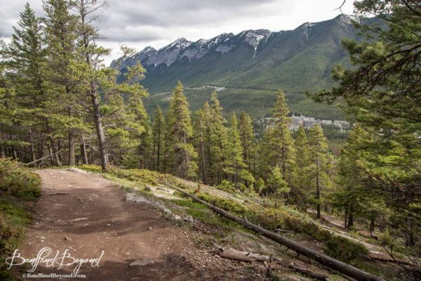 tunnel montain summit hiking trail with view of the banff springs hotel