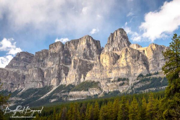 view of sunlight hitting the peaks of castle mountain in banff