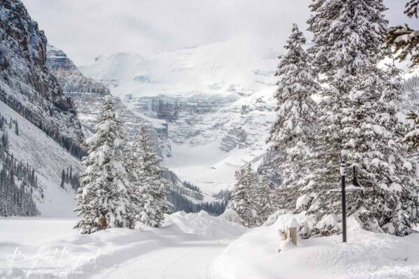 winter-photography-lake-louise-snow-ice-frozen-white
