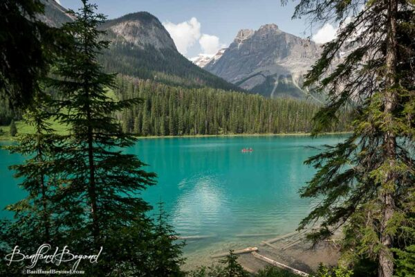 green water of emerald lake in yoho national park