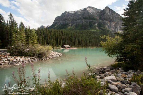 opaque turquoise green colour of lake louise in august