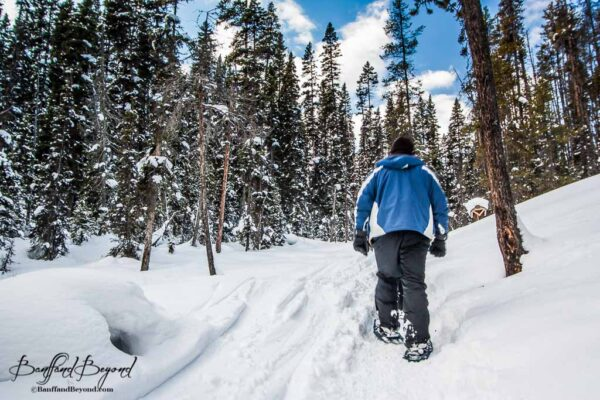 snowshoeing-canadian-rocky-mountains-banff-national-park-winter-activities