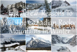 Just A Few Reasons To Visit The Canadian Rocky Mountains In Winter