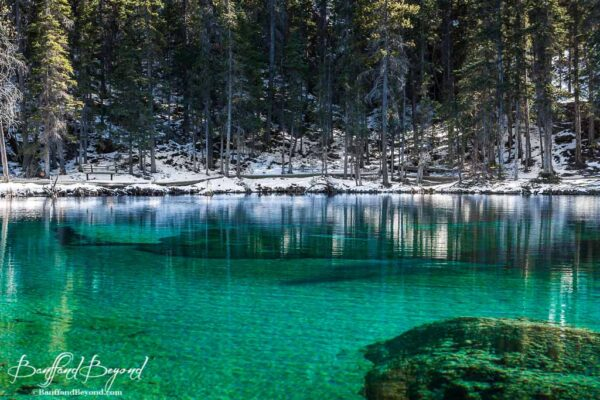 beautiful green hues of grassi lakes canmore