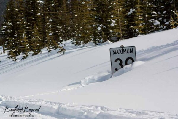 speed sign buried in feet of snow banff