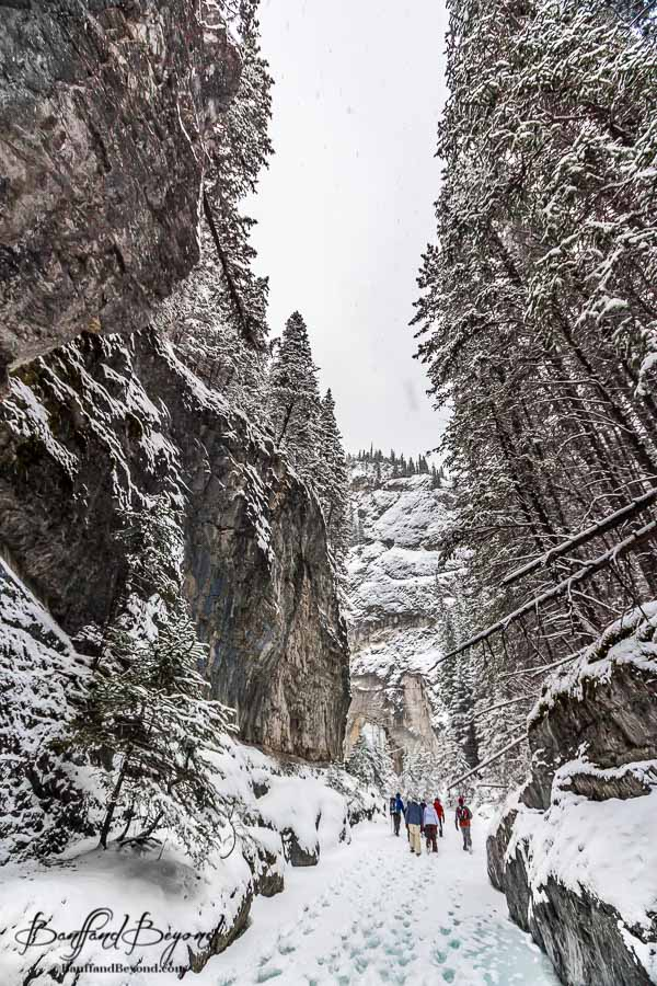 steep walls of grotto canyon in canmore