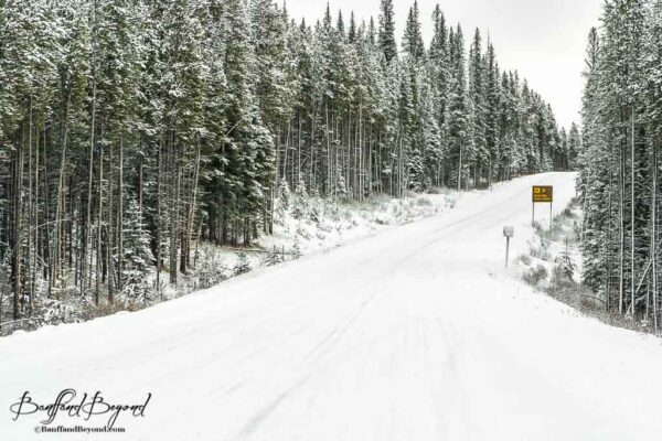 winter road conditions on the bow valley parkway