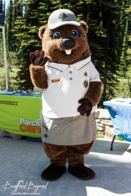 justin beaver parks canada mascot at mount revelstoke summit