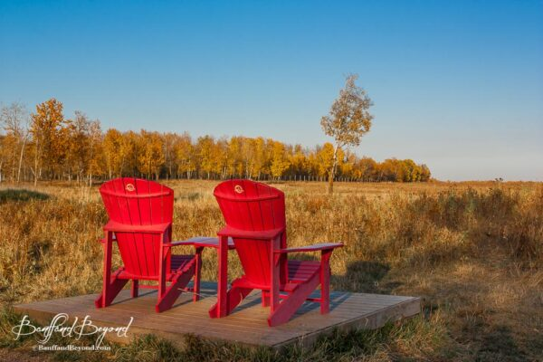 plan your visit to elk island national park banffandbeyond